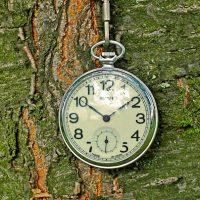 pocket-watch-5952771_640