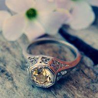 ring-1198744_640